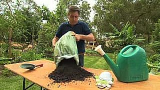 Handling Potting Mix
