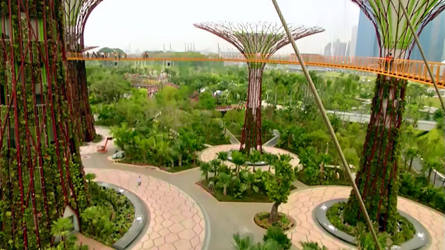 Gardens by the Bay Competition Winner