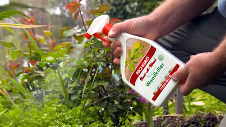 Richgro Natural Weedkiller