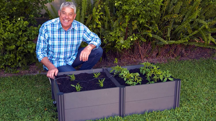 Holman raised garden beds